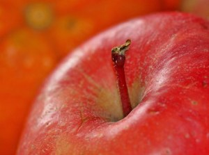 A close up picture of a red apple and its stem