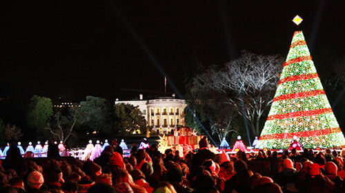 Crowds gather for the official lighting of the National Christmas Tree on the White House Lawn