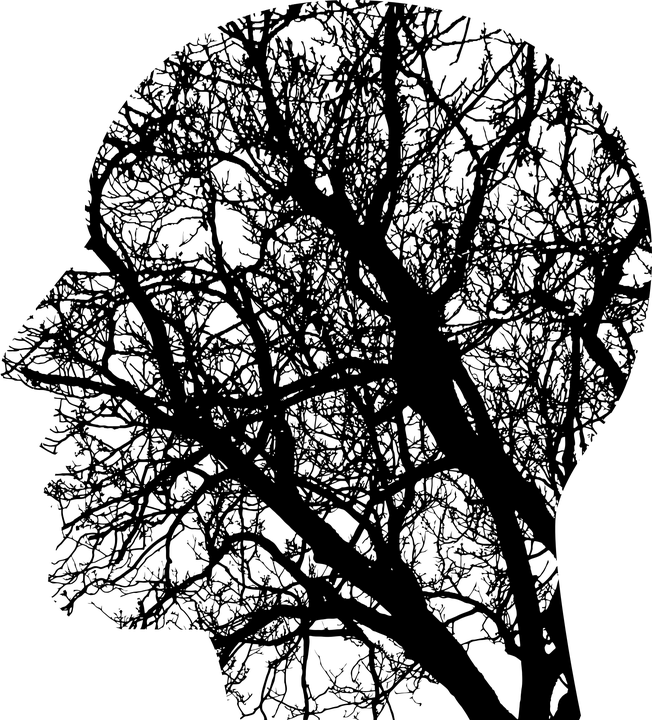 abstraction of a human head displaying trees inside the skull