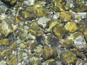 River rocks gleaming in the sunlight