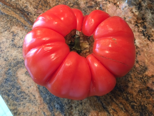 Heirloom tomato on granite