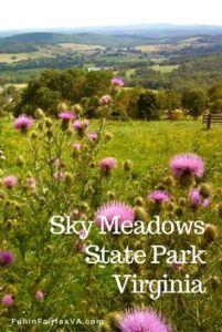 Sky Meadows State Park, Delaplane, VA