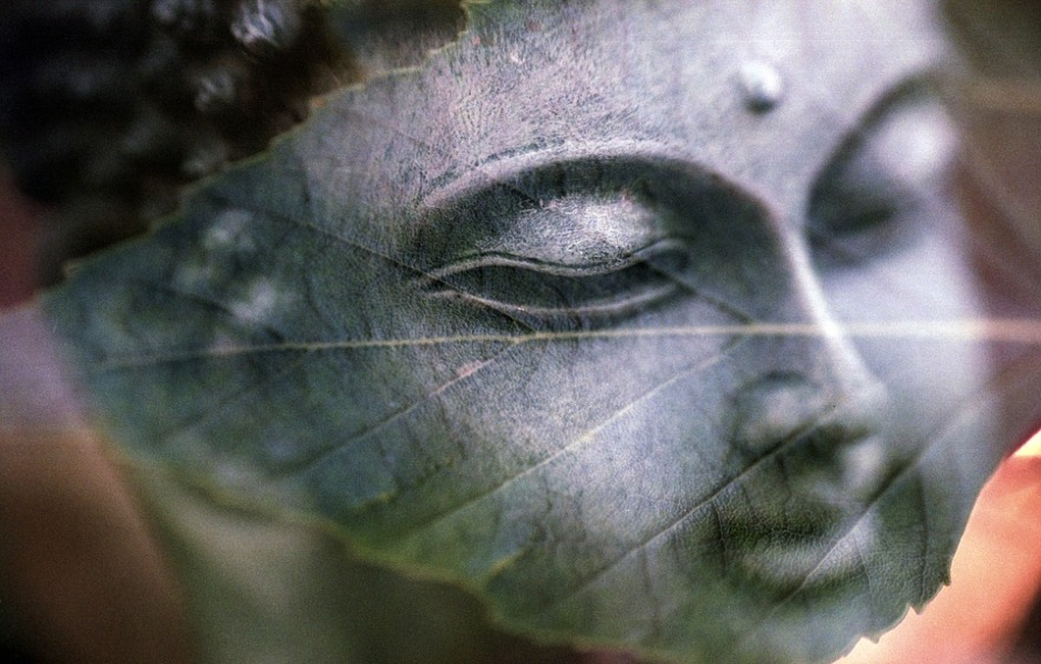 Reflection of the image of Buddha on a leaf