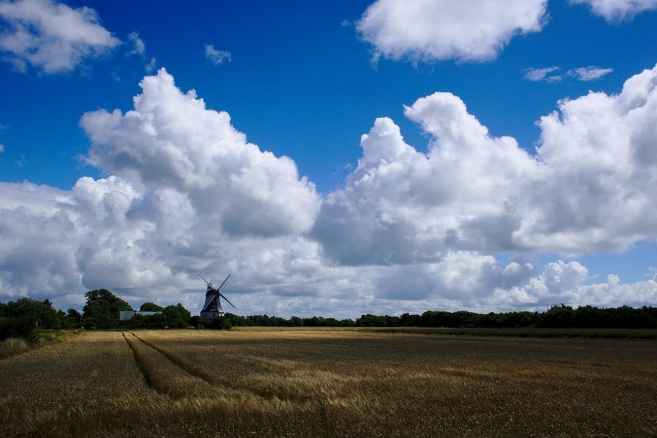 Cumulus clouds hang over a wheat field and a windmill