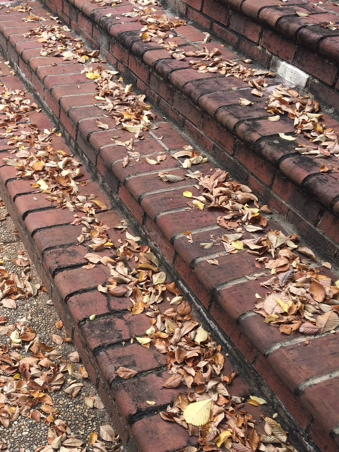 Brown brick steps littered with autumn brown leaves