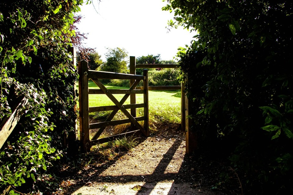 An open gate that leads to green open spaces