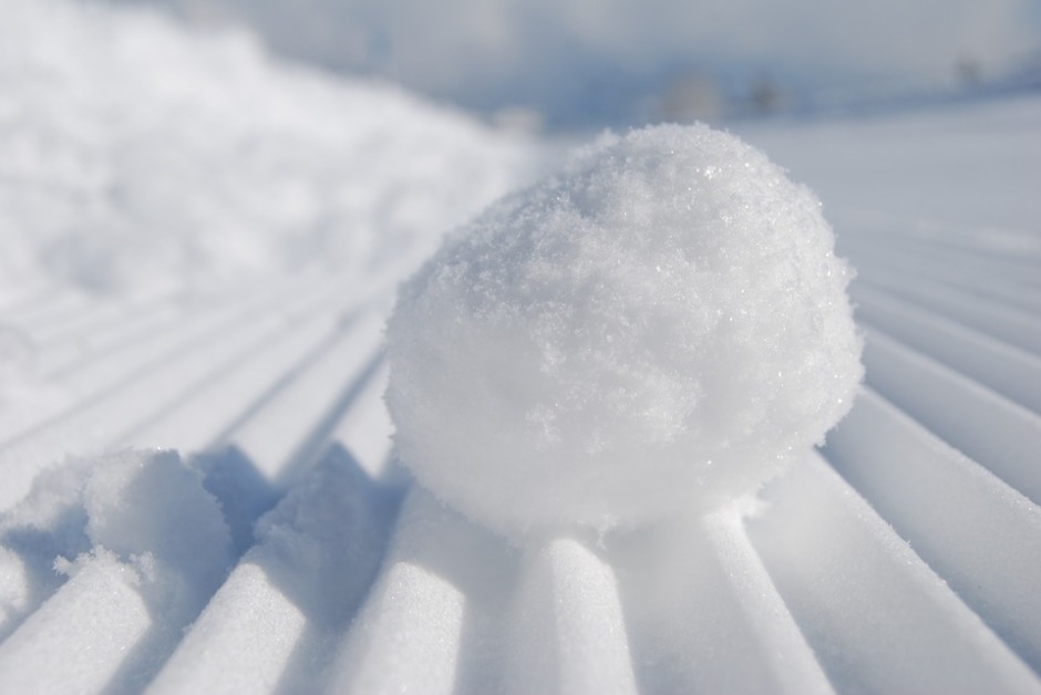 A snowball glistening in the sun