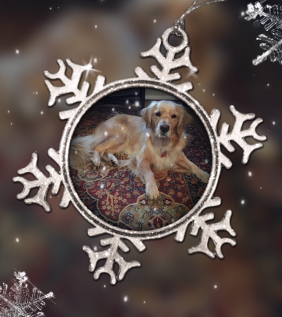 Golden Retriever Brodie featured in a snowflake