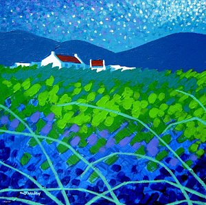 Starry night in Wicklow John Nolan