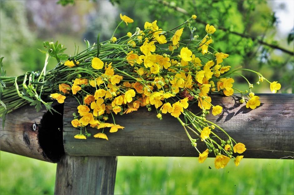 spring bouquet of wild flowers