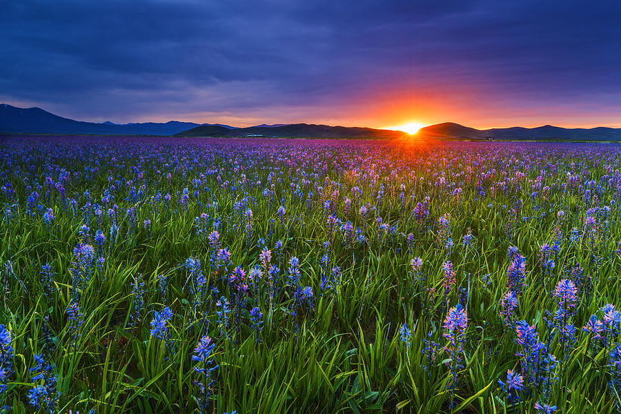 Dramatic spring sunrise in Idaho