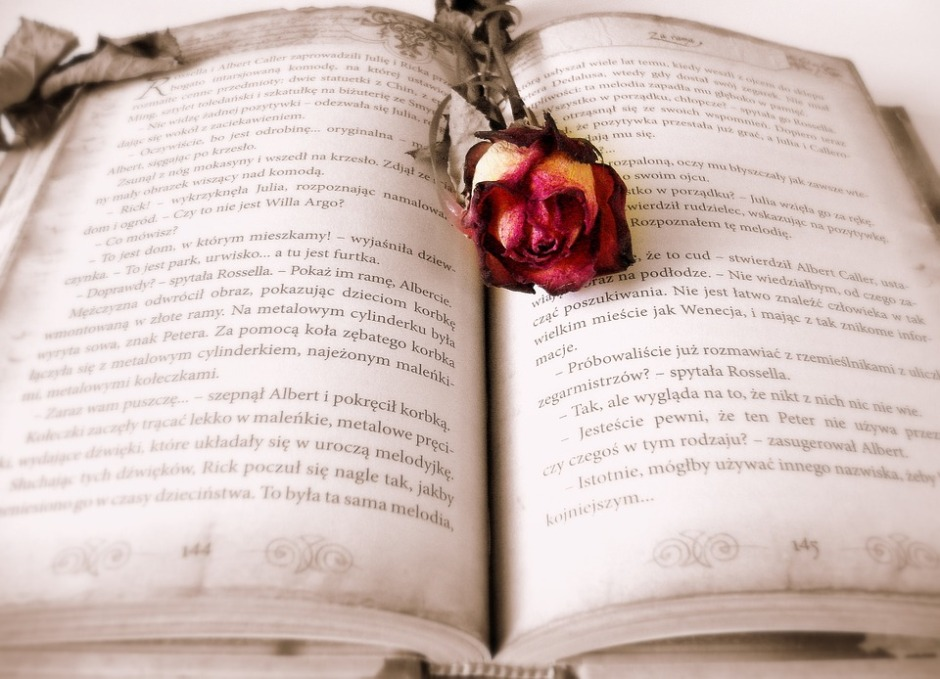 An open book with a rose in the middle of the pages