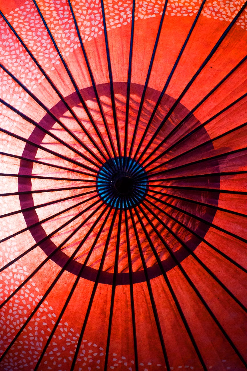 pexels photo inside of a red umbrella